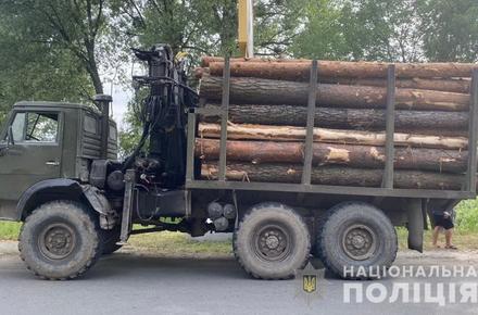 1599e5ace5bac2e08115b59f6359591d preview w440 h290 - В Житомирській області екологи піймали дві вантажівки з деревиною без документів, поліція вилучила автомобілі