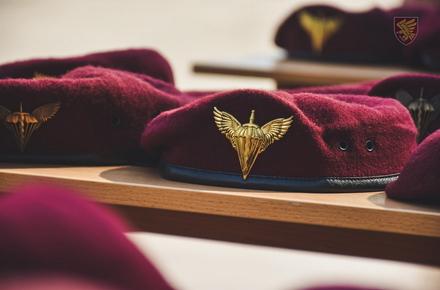 4d01ab053717cf54079d86cf6b42a325 preview w440 h290 - В житомирській 95-й бригаді новобранці виголосили «Клятву десантника» та вдягнули марунові берети