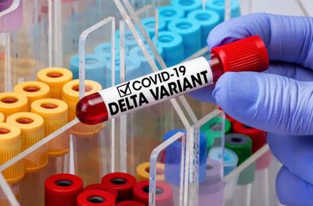 6874e3d0cc32730791f5aa7d66af4735 preview w440 h290 - Штам «Delta» підтвердили у 20 хворих на коронавірус з Житомирської області, одна жінка померла