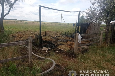 c92341854b351590b1c9f7bc422536b5 preview w440 h290 - У селі Житомирської області на пожежі загинув 6-річний хлопчик