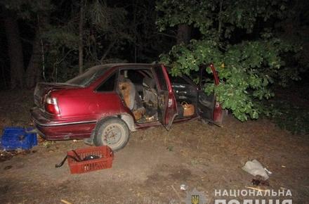 3b2ebd487ce49c0436c06d8d834756f5 preview w440 h290 - У лісі на півночі Житомирської області загорівся легковий автомобіль: водій та пасажир отримали опіки ніг і тулуба