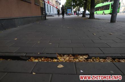 e51f6033acc30985d9f058320663a3b9 preview w440 h290 - Який вигляд має плитка на центральних вулицях Житомира через п'ять років після початку реконструкції тротуарів. Фоторепортаж