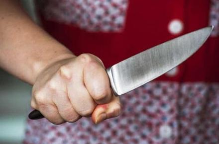 a606fc676e58425ed37e027e1933d5de preview w440 h290 - У Житомирі 18-річна гостя втрутилась у суперечку та вдарила знайомця ножем
