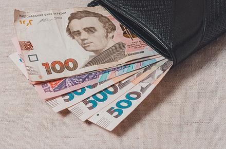 85d46395913adfd9154fa437e321ae46 preview w440 h290 - У Житомирській області другий місяць поспіль фіксують зниження середньої зарплати