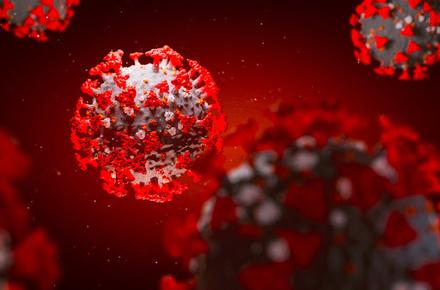127770fb9b6e2dc11e272eefef36314e preview w440 h290 - За добу в Житомирській області виявили 301 інфікування коронавірусом і зафіксували 9 летальних випадків
