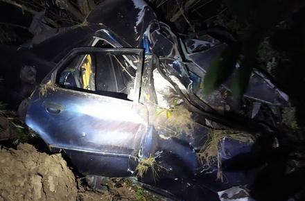 358ccc6e3ee4a8f7f654e8f6cb4d8453 preview w440 h290 - На трасі в Житомирській області зіткнулися Audi і MAN: водій і пасажир легковика загинули на місці (доповнено)