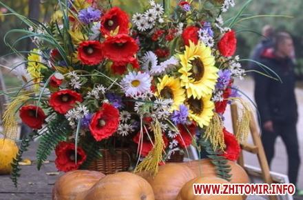 bc0bef1969447665b16709e2e1eea55a preview w440 h290 - На Покрову і День захисника у Житомирі планують відкрити пам'ятний знак, організувати концерти й виставку військової техніки