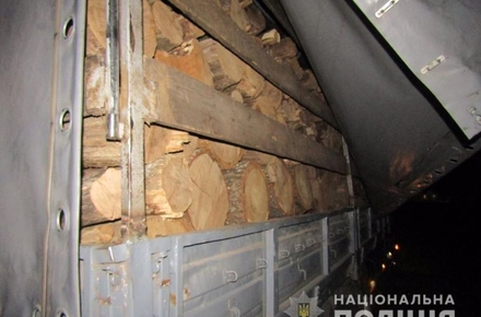 1559e67f174d1797e3386901cdaaec22 preview w440 h290 - На півночі Житомирської області поліція зупинила вантажівку з дубовими колодами без документів, водій спробував відкупитися