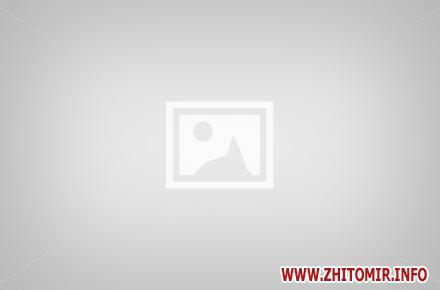 no image w440 h290 - Краса та чарівність цьогорічного святкування Дня Житомира. Фоторепортаж